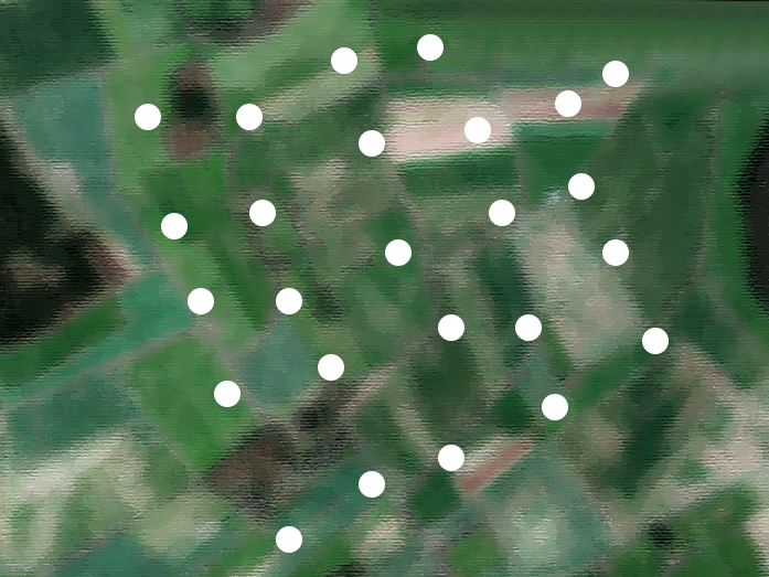 Sampling grid for one 1x1-km landscape